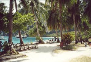 Snorkelling Phi Phi islands