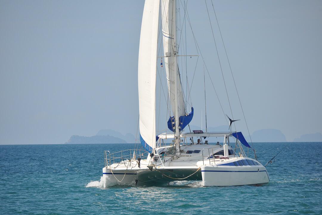 Swift under sail front view